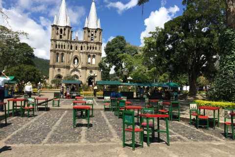 De Medellin: Viagem de um dia a uma plantação de café Jardin