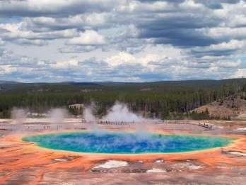 Grand Teton und Yellowstone: 4 Tage 3 Nächte Tierwelt-Tour
