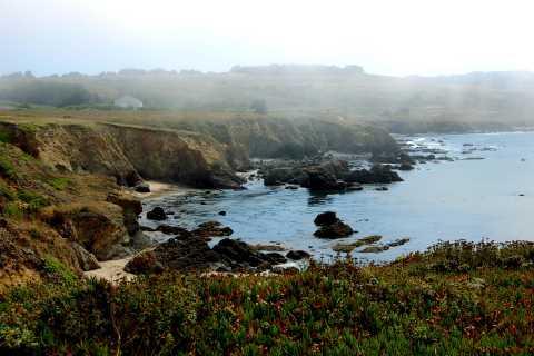 San Francisco: Monterey and Carmel Tour