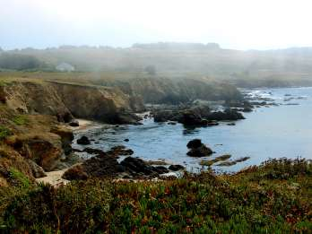 Ab San Francisco: Monterey & Carmel Tour mit Aquarium-Option
