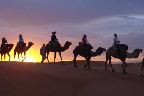 From Marrakech to Zagora & Merzouga: 4-Day Desert Tour