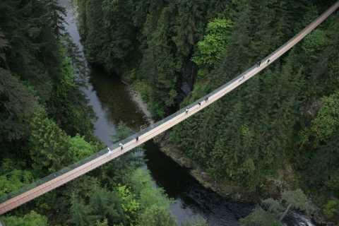 Vancouver & Capilano Suspension Bridge Sightseeing: Half-Day