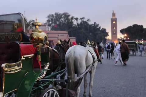 Marrakech Full-Day Guided Tour with Lunch