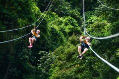 Ziplines Adventures & Monkeyland: dia inteiro