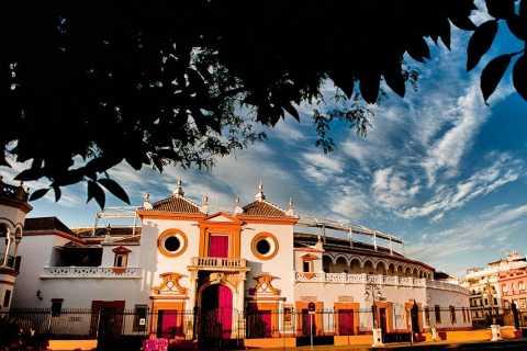 Recorrido turístico y crucero por la Sevilla artística
