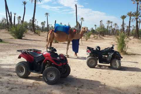 1-Hour Camel Ride and 2-Hour Quad Bike Ride in Marrakech