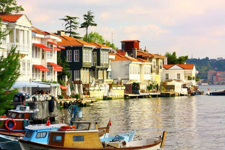 Ab Istanbul: Tagestour Prinzeninseln mit Mittagessen