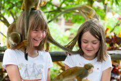 Punta Cana: Excursão de Meio Dia à Terra dos Macacos