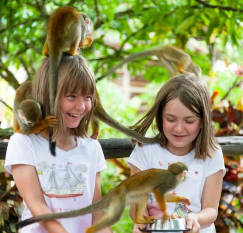 Punta Cana: Monkey Land Half-Day Safari