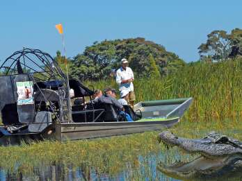 Orlando: Sumpfboot-Abenteuer
