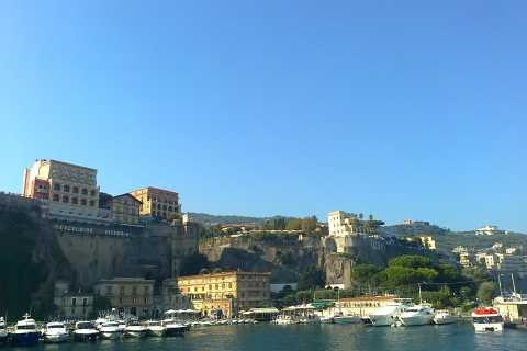 From Rome: Sorrento and Pompeii Private Full-Day Trip