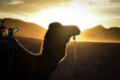 Excursão de 2 Dias ao Deserto saindo de Marrakech