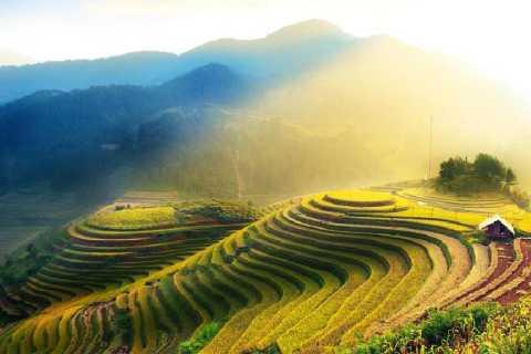 Guilin Private Tour of Dragon's Backbone Rice Terraces