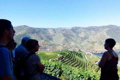 Tour Vinhedos do Vale do Douro de 1 Dia Saindo do Porto