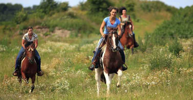 Alanya: Horse Riding Adventure