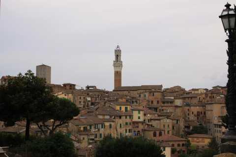 Private Tour: Walking Tour Siena