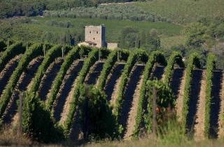 Von Montecatini: San Gimignano, Siena und Chianti-Tour
