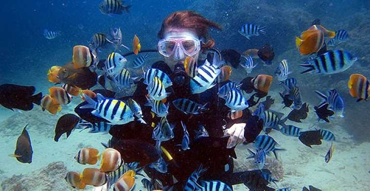 From Phuket: Advanced Open Water Diving Course