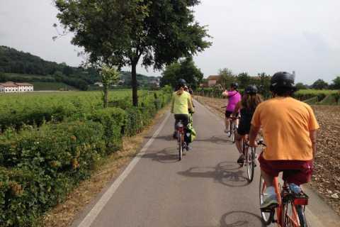Amarone Countryside E-Bike Tour