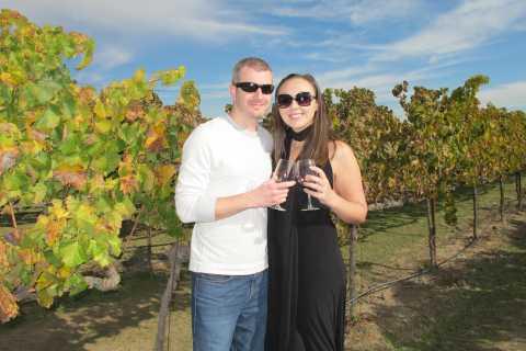 Da San Francisco: Full-Day Sonoma Valley Wine Tour