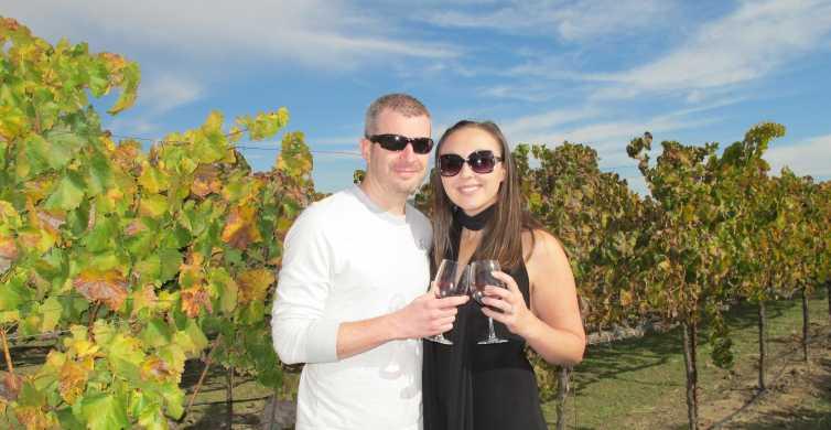 Von San Francisco: Ganztages Sonoma Valley Wine Tour