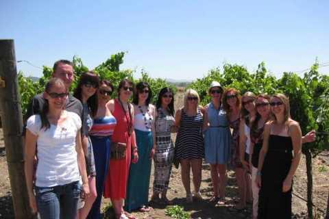 Ab San Francisco: ganztägige Weintour Napa Valley