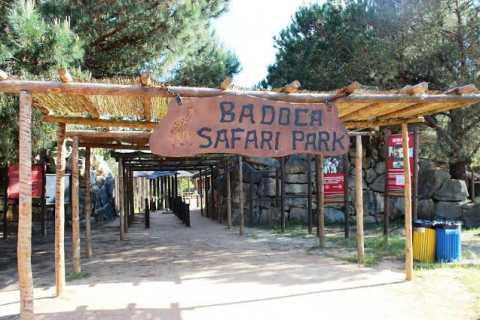 Badoca Safari Park Full-Day Tour from Lisbon