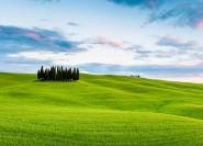 Ab Florenz: Käse- und Weinproben-Tour zur Val D