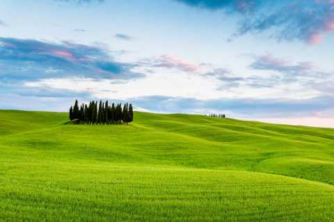 Val D'Orcia: Cheese and Wine Tasting Tour from Florence