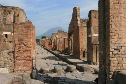From Rome: Naples and Pompeii Tour with Pizza Lunch