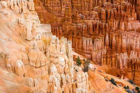 Bryce Canyon National Park Day Tour