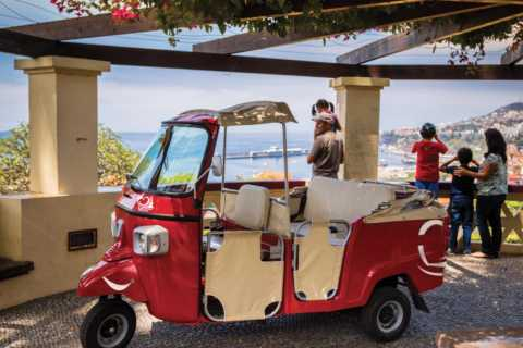 Funchal Viewpoints: 90-Minute Guided Tuk Tuk Tour