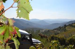Douro-Tal: Geländewagentour mit Weinprobe und Picknick