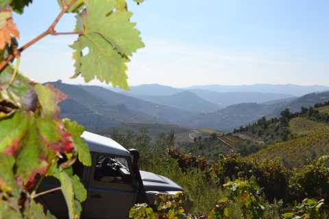 Douro Valley 4WD Tour with Wine Tasting and Picnic