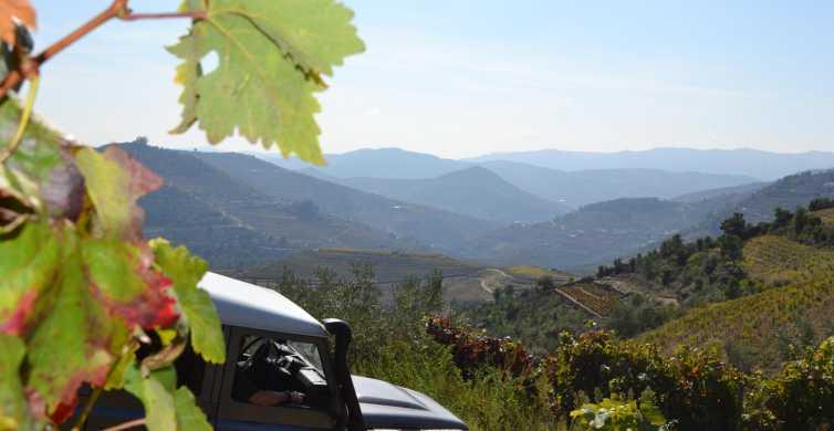 Tour 4DD della Valle del Douro con degustazione di vini e pic-nic