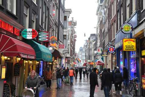 Amsterdam: Private Half-Day Walking Tour