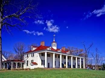 Mount Vernon und Old Town Alexandria Tour