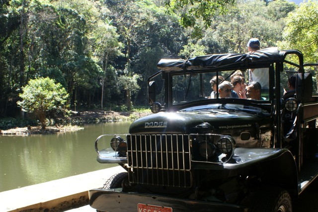 Tijuca Rain Forest Tour by Jeep from Rio de Janeiro