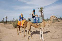 Passeio de Camelo no Palmeiral de Marrakech com Chá