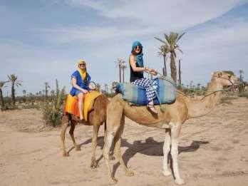 Marrakesch: Kamelritt durch Palmenhaine mit Teepause