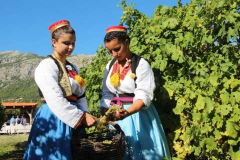 Konavle Valley: Private Half-Day Tour with Wine Tasting