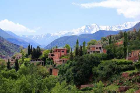 Valle dell'Ourika: tour di 1 giorno da Marrakech