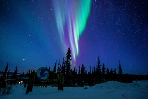 From Fairbanks: Northern Lights and Arctic Circle Tour