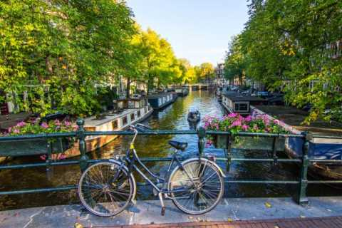 Private Amsterdam Walking Tour in German or English
