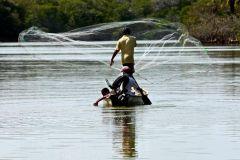 De Acapulco: Coyuca Lagoon Tour e Baby Turtle Release