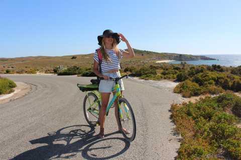 Depuis Perth: ferry A/R et vélo sur Rottnest Island