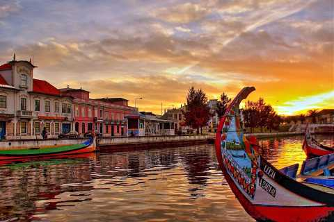 From Lisbon: Full-Day Aveiro & Ilhavo Private Tour