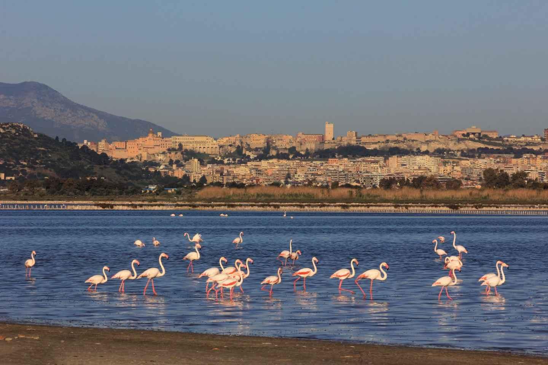 Ab Cagliari: Ausflug zu Stränden an der Westküste
