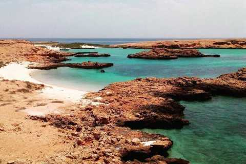 Muscat: Snorkeling Cruise to Daymaniat Islands Reserve