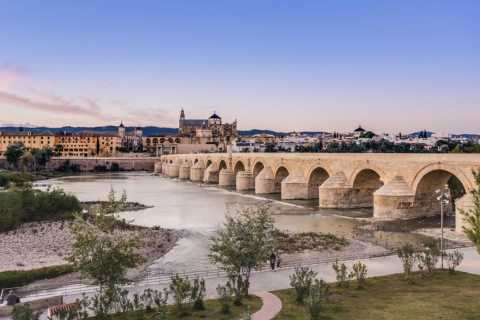 Córdoba: Private Tour with Lunch